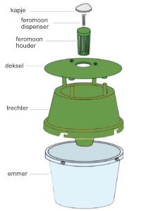 BUXATRAP schematic view