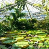 Botanische tuin biologische bestrijding