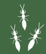 Predatrip group icon